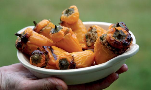 Peperoni ripieni di tonno – Met tonijn gevulde minipaprika's