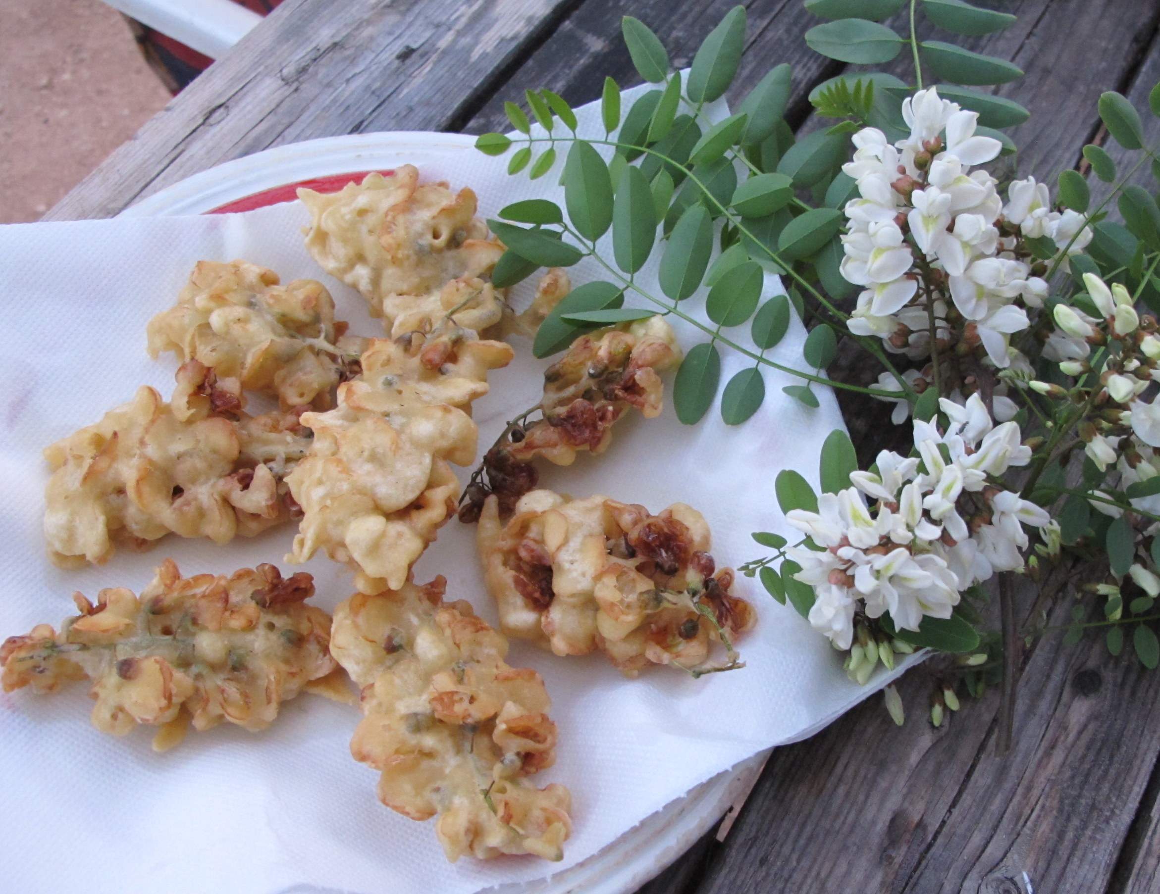 Fiori di robinia fritti – Gefrituurde robiniabloesem