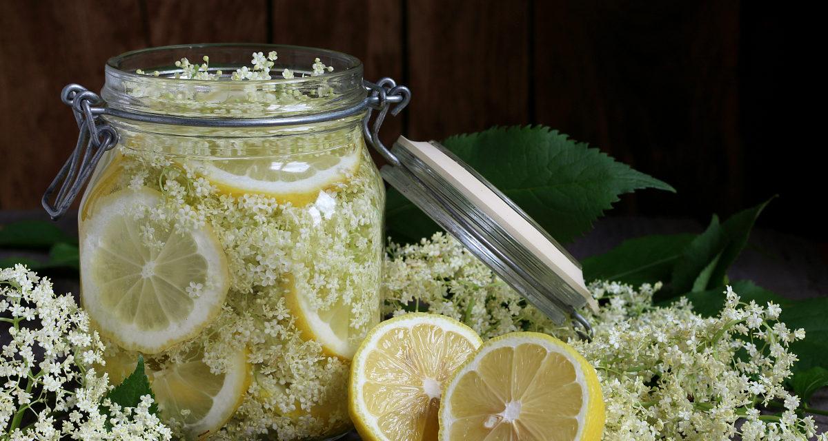 Sciroppo al sambuco – Limonade van vlierbloesem